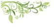 Obrazy na płótnie, fototapety, zdjęcia, fotoobrazy drukowane : Frühling, frame, Blätter, Laub, Ranke, Grüntöne