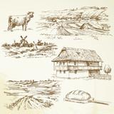 farming, rural landscape