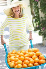 Senior Woman Pushing Wheelbarrow Filled With Oranges