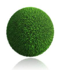 green grass ball on white background