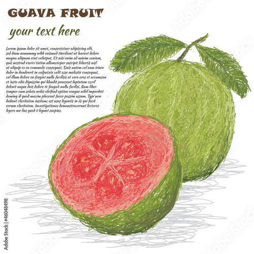 guava fruit