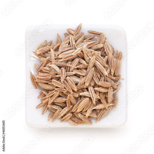 Cumin seeds in a white bowl on white background.