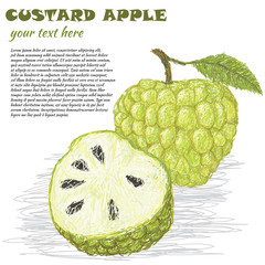 custard-apple