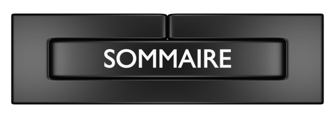 Sommaire 1.09