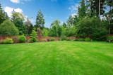 Green large fenced backyard with trees. - 46071023