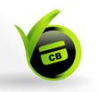 icône carte bancaire sur bouton vert et noir