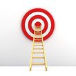 Ladder to the middle of the red target on white background