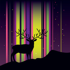 Deer and aurora