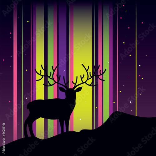 Deer and aurora