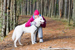 The woman with a dog in a forest park