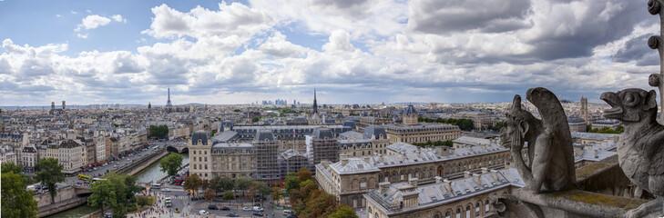 I Gargoyle di Notre Dame - Parigi