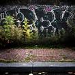 Fond graffiti et nature