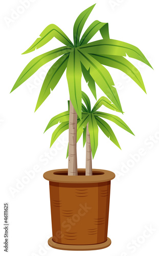 illustration of tree in tree pot.Vector