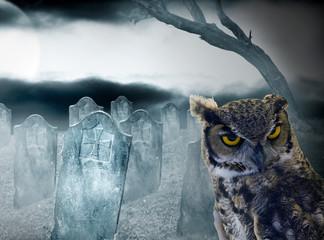 halloween, búho y cementerio