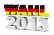 Die Wahl 2013