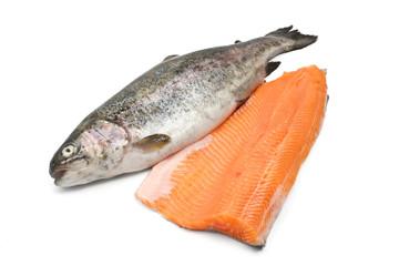 trota con filetto - trout and fillet
