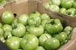 Pickle green tomatoes in a big supermerket