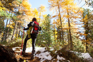 trekking in autumn