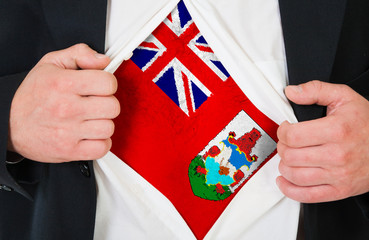 The Bermuda Islands flag