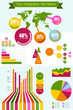 Vector infographic elements set big