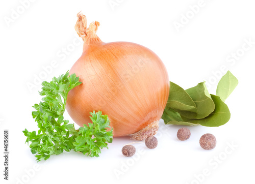 Fresh gold onions, pimento, parsley and bay leaves isolated on w