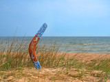 Color boomerang on overgrown sandy beach.