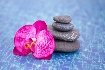 details of daily spa, stones and orchid