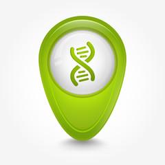 Puntatore 3D_DNA