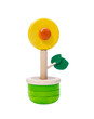 Colorful wooden flower toy vase isolates on white