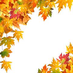 Herbst: Arrangement aus bunten Blättern