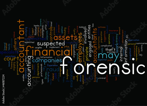 24 Who uses forensic accountants