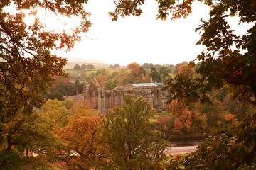 Bolton Abbey, UK.