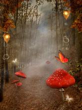 Enchanted nature série - voie d'automne avec des champignons rouges