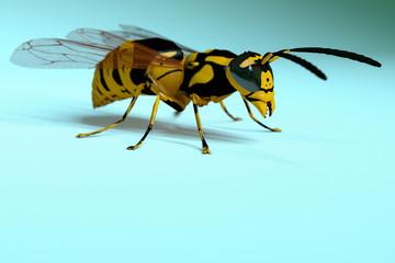 Wasp Render