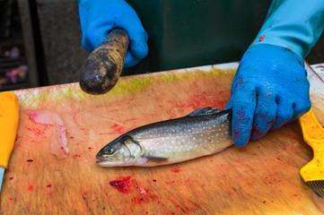 Fischer tötet Fisch