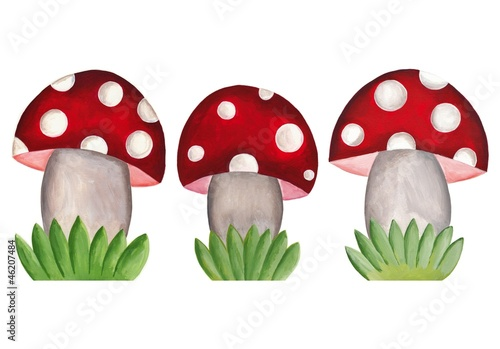 artwork. amanita mushrooms