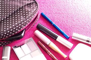 The cosmetics with a cute pouch