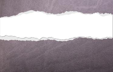 Carta da regalo texture pelle con strappo