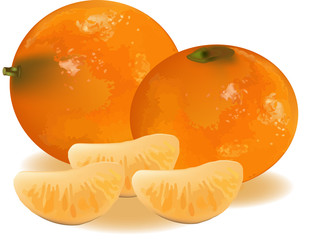 mandarino