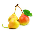 collection pears