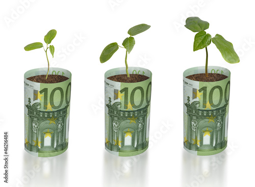 Saplings growing from euro banknots