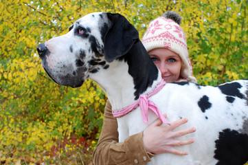 deutsche Dogge im Profil mit Frau