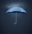 Umbrella with heavy fall rain