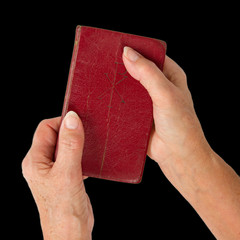 Old hands (woman) holding a very old bible