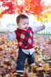 Cute Boy Playing in Leaves