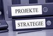 Projekte und Strategie