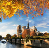 Fototapety Notre Dame with boat on Seine in Paris, France
