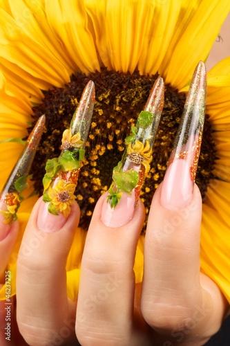Fototapeten,sonnenblume,nagel,abstrakt,kunst