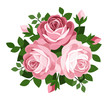 Three pink roses. Vector illustration.