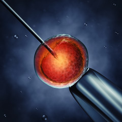 Intracytoplasmic sperm injection , 3d illustration